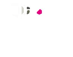 TinyMDM